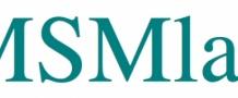 MSM-LAB