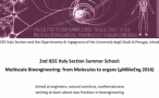 2nd IEEE ITALY SECTION SUMMER SCHOOL Multiscale Bioengineering: from Molecules to organs Perugia, June 6-10 2016